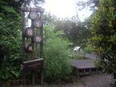 宜蘭羅東林業文化園區:IMGP5568.JPG