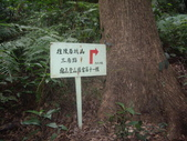桃園龜山大坑桐花步道、陳厝坑山:IMGP7220.JPG