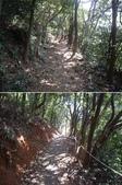 新北林口頂福巖森林步道:IMGP0963-64.JPG