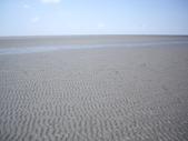 雲林口湖外傘頂洲:IMGP8201.JPG