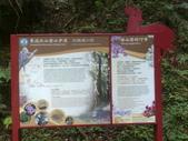 苗栗泰安雪見遊憩區、林間步道:IMG_0011.jpg