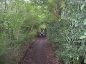 宜蘭羅東林業文化園區:IMGP5569.JPG