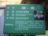 台南安平古堡:IMGP7310A.JPG