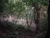 台北內湖金面山、剪刀石山、西湖山、小金面山:IMGP7681.JPG