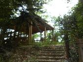 新竹北埔水磜村桐花林登山步道:DSCN3754.JPG