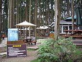 新竹五峰鵝公髻山:IMGP0729.JPG