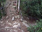 台中豐原中正公園登山步道、三崁頂健康步道:IMGP3487.JPG
