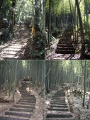 雲林古坑嘉南雲峰、石壁山、萬年峽谷:IMGP9271-75.JPG