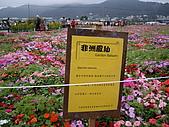 台中新社花海、暗影山:IMGP2572.JPG