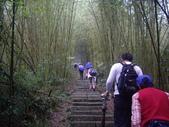 南投魚池水社大山登山步道、卜吉山:IMGP2161.JPG