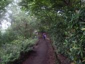 宜蘭羅東林業文化園區:IMGP5570.JPG
