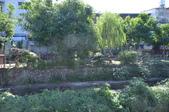 鹿角溪畔全齡化公園啟用 銀髮長青共融:有大法輪.JPG