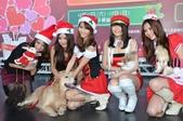 新北歡樂耶誕城 邀請全國朋友一起來:美少女寵物組也來參一腳.jpg