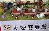 大安庇護農場週年慶 敬邀愛心點綴聖誕節:盆栽植物.jpg