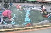 山佳鐵道紅到日本 大仙市長率公所團隊參訪 :洗衣服的小溪.JPG