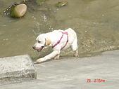遛狗去~:爬不上來