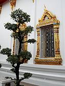2007泰國曼谷之旅+亞太微波會議:DSCN3512.jpg