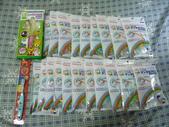 1040804道頓堀+心齋橋:P1360914.JPG