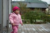 1歲10個月:1001211-12清境遊上傳-7.jpg