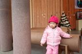 1歲10個月:1001211-12清境遊上傳-8.jpg