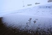 冰8:_MG_7814_冰島極光.jpg