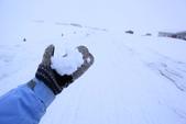 冰8:_MG_7845_冰島極光.jpg