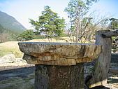 日式造園:IMG_3544