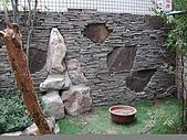 版岩系列:鐵平石層亂