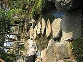 日式造園:IMG_3183