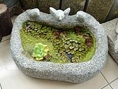 stone流泉:照片 009