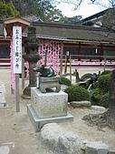 日式造園:IMG_3766