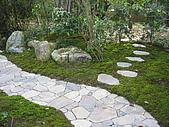 日式造園:IMG_2962