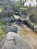 日式造園:IMG_3216
