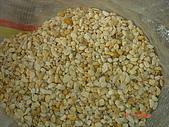 卵石:黃金石-2.JPG