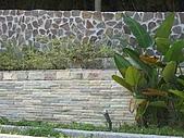 版岩系列:~牆4