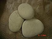 卵石:雪白扁石-1.JPG