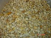 卵石:黃金石-小1.JPG