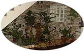 版岩系列:sept0201-1