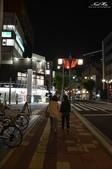 日本埼玉東京自駕遊:125.jpg