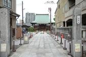 日本埼玉東京自駕遊:40.jpg