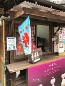 日本埼玉東京自駕遊:67.jpg