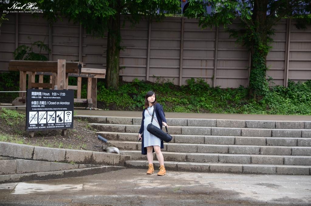 日本埼玉東京自駕遊:138.jpg
