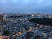 日本埼玉東京自駕遊:526.jpg