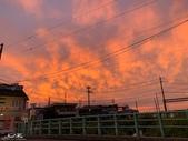 日本埼玉東京自駕遊:102.jpg