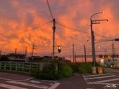 日本埼玉東京自駕遊:103.jpg