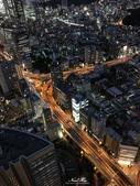 日本埼玉東京自駕遊:528.jpg