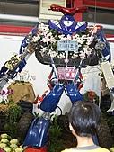 溪州花卉博覽:100_9977.JPG