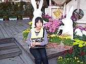 溪州花卉博覽:100_9964.JPG