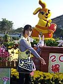 溪州花卉博覽:100_9990.JPG