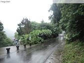 陽明山、竹子湖、碧潭一日遊…:DSC01344.JPG